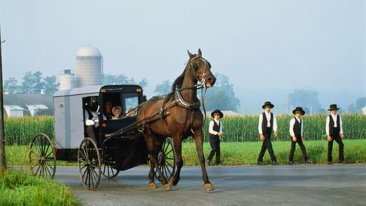 Amish folks