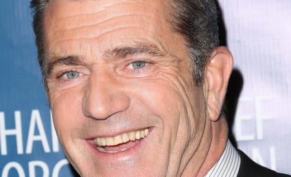 Mel Gibson to Star as Villain in The Expendables 3