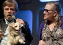 Mark Hamill Bids Heartbreaking Farewell to Carrie Fisher