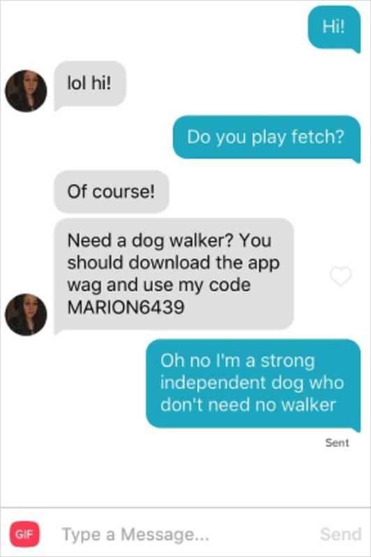 Dog WALKER?
