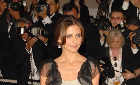 Sarah Michelle Gellar Red Carpet Photo