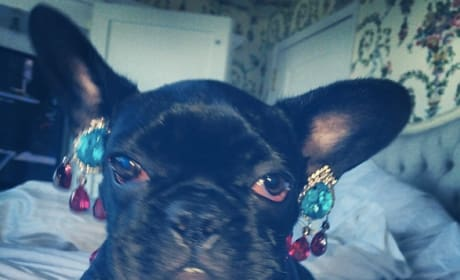 Asia with Earrings