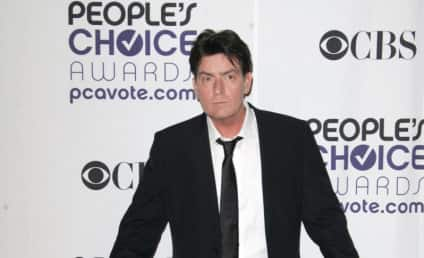 Police Wrap Up Charlie Sheen/Brooke Mueller Investigation, Kids Doing Well