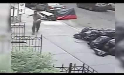 Dude Tries to Shove Bag of Poop Down Woman's Pants: WATCH!