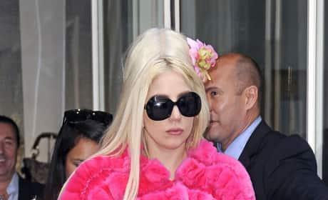 Team Gaga or Team PETA?