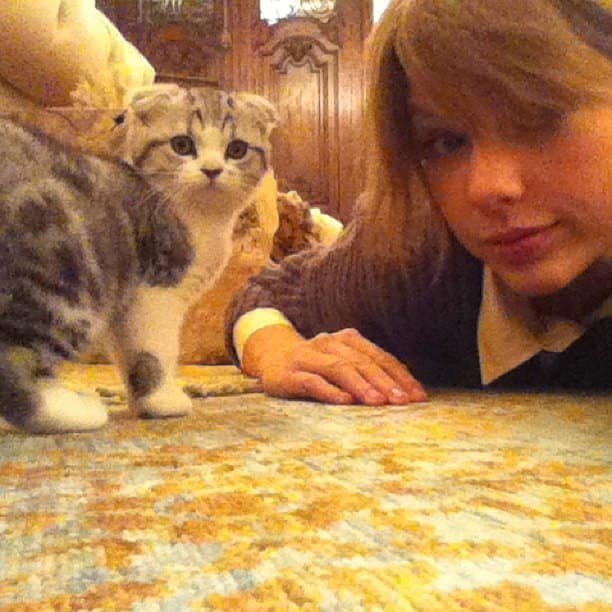 You Get to Take Selfies with Taylor Swift