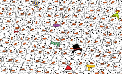 Panda-Snowmen Puzzle Leaves Internet Stumped, Irate