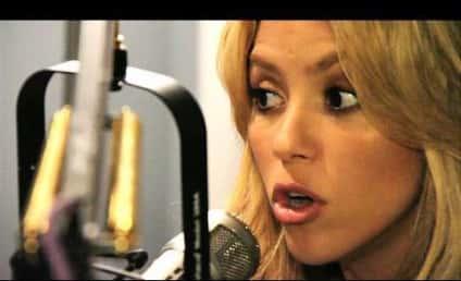Shakira to Arizona: You're Violating Human Rights