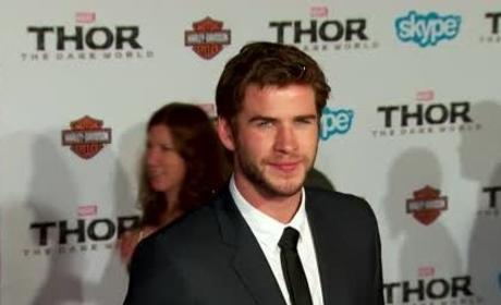 Liam Hemsworth and Nina Dobrev: New Couple Alert?