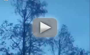 David Eason Hurricane Florence Video