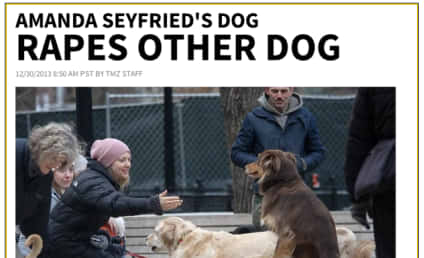 Amanda Seyfried Rips TMZ for Dog Rape Headline