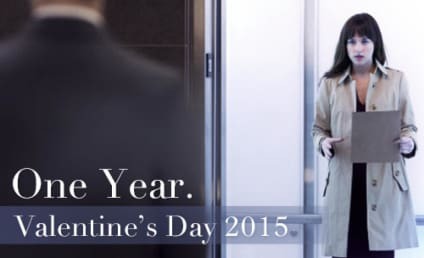 Fifty Shades of Grey Poster: One Year ...