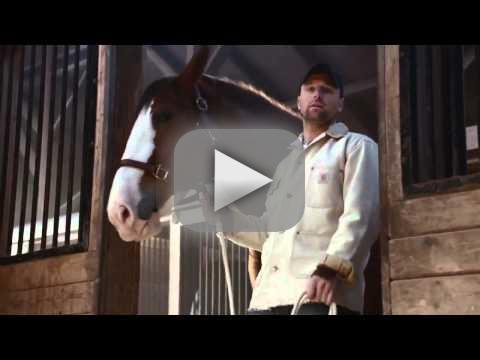 Budweiser Super Bowl Commercial: Lost Dog