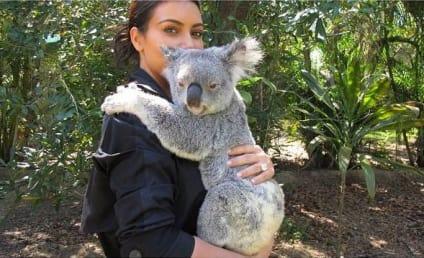 Kim Kardashian Kuddles Kranky Koala: Put Me Down!