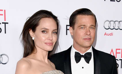 Brad Pitt to Angelina Jolie: Stop Blabbing About Our Custody Battle!