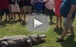 Man Uses Alligator for Gender Reveal, Shocks Chrissy Teigen