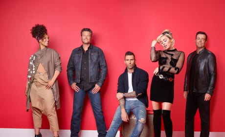 The Voice Season 11 Cast