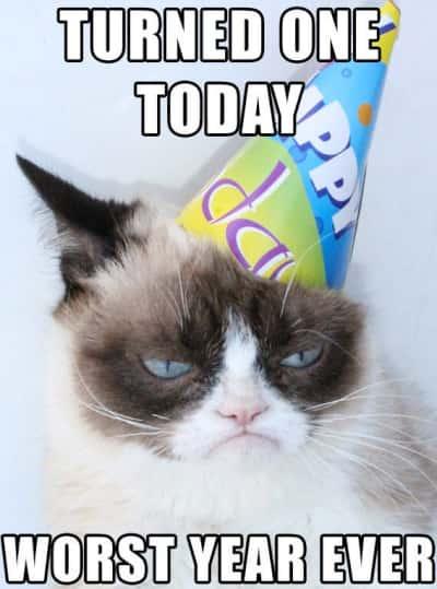 Grumpy Cat Birthday