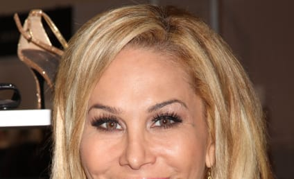 Adrienne Maloof Wins Temporary Custody, Accuses Ex-Husband of Choking Son
