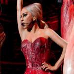 Lady Gaga Meat Dress (NEW!)