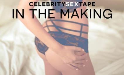 "Farrah Abraham Exclusive: Star Teases ""Celebrity Sex Tape"" Novel, Career Highlights & Regrets"