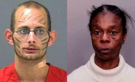 Florida Man: Strange Sunshine State Stories