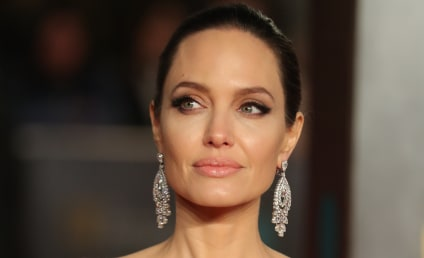 "Angelina Jolie Slams ""Deplorable"" Leak of Divorce Negotiations"
