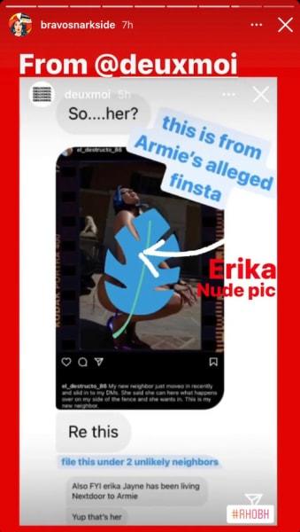 Armie Hammer: Posting Nude Pics of Erika Jayne? Having