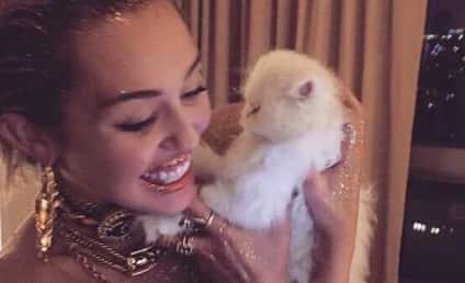 Miley Cyrus Named Sexiest Vegetarian of 2015