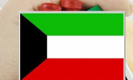 Kuwait to Install Gay Detector at Airports