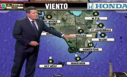 Univision Weather Cat Thinks He Owns the Place