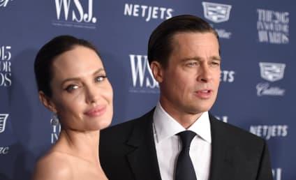 Brad Pitt: Fighting Angelina for Sole Custody?!