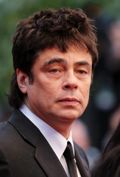 Benicio Del Toro Pic