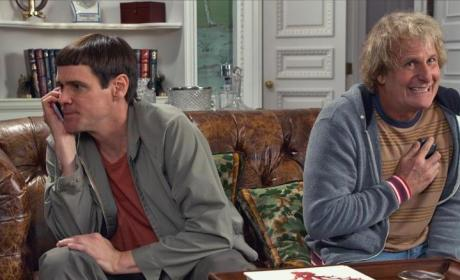 Dumb and Dumber To: Should You See It?