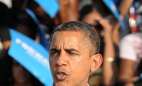 Should President Obama pardon turkeys?