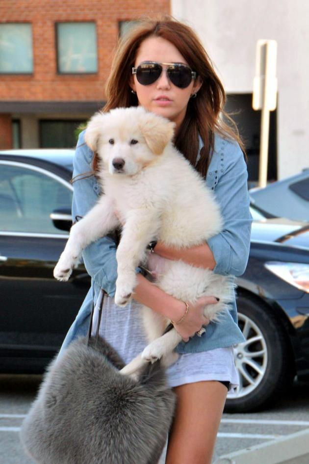 Miley and Puppy