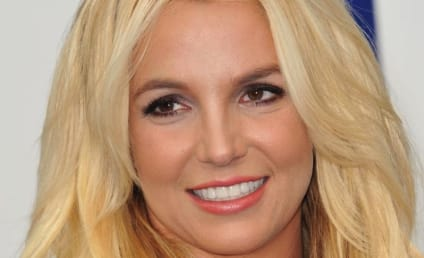 Britney Spears Wants to Get Married Again, Have More Kids