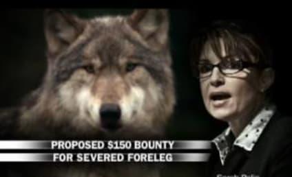 Ashley Judd: Down with Sarah Palin!!!
