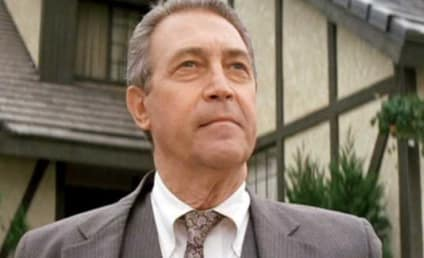 James Karen, Actor You Know From Everything, Dies at 94