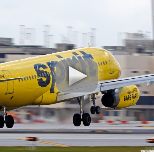 Spirit airlines cancels flights in florida mass chaos erupts