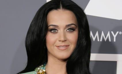 Grammy Awards Fashion: Best & Worst Dressed