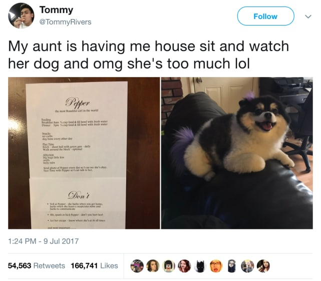 "All Aunts are ""Too Much,"" Right?"