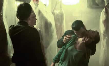The Vampire Diaries Season Premiere Recap: Beware of the Siren!