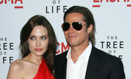Report: Brad Pitt and Angelina Jolie are Nice