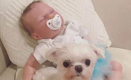 Courtney Stodden Dog Reborn Baby