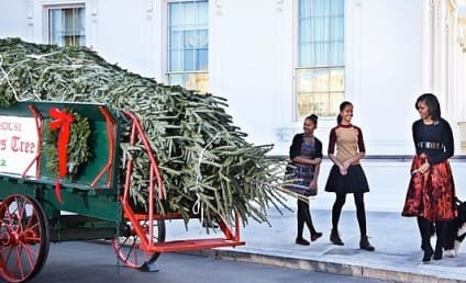 Michelle Obama, Daughters Welcome White House Christmas Tree