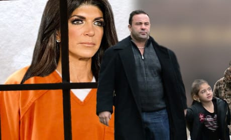 16 Real Housewives Stars Who Have Been Arrested
