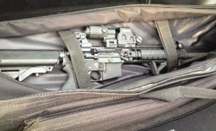 Lauren Tannehill, Wife of Miami Dolphins Quarterback, Leaves Rifle in Backseat of Rental Car