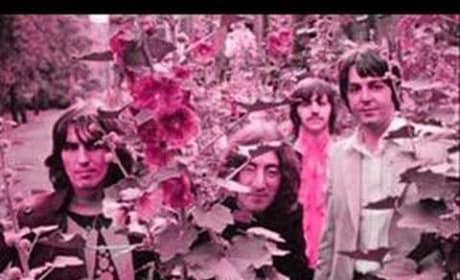 Dear Prudence - The Beatles