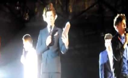 Harry Styles: Hit in Crotch by Flying Shoe!
